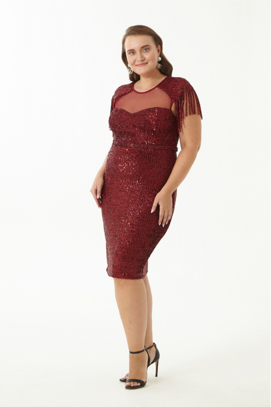 Claret red plus size dress