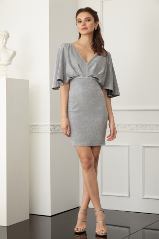 Silver velvet 13 short sleeve mini dress
