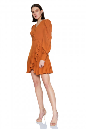 Ginger chiffon long sleeve mini dress